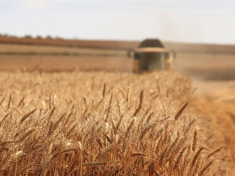 Agriculture: the new national security frontier